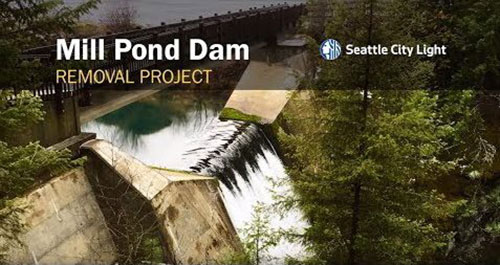 Mill Pond Dam removal project where Donaldson Consulting LLC provided oversight regarding inclusion of diverse minority and woman-owned businesses.